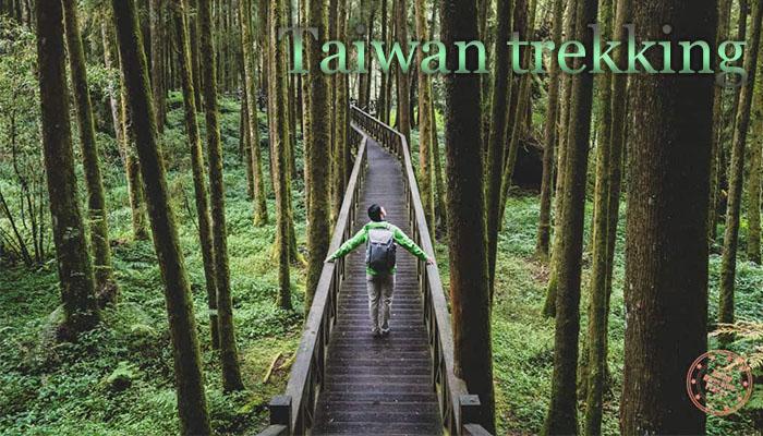 เดินป่าไต้หวัน